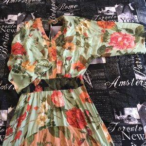 6e854bcec6a48 Anthropologie Dresses - NWT RARE Anthro/Farm Rio 🌷 Marilla Maxi Dress